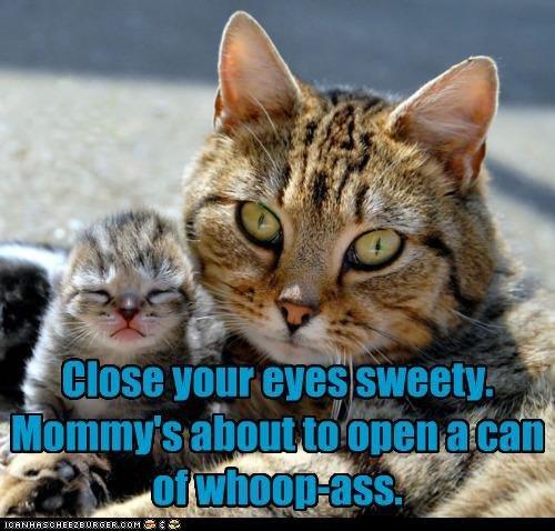 whoop ass. moms gonna open it.. Mom scares me. cat whoop
