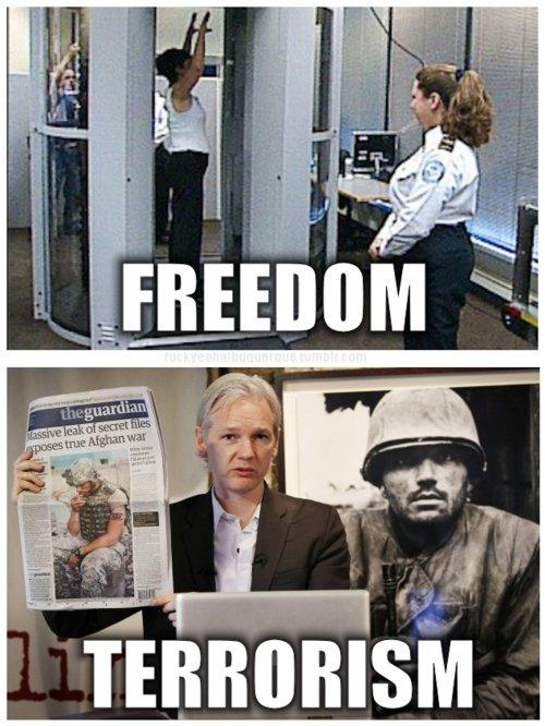 wikileaks. sad sad sad.