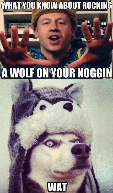 wolf hat. . Human know amour nnch( mi: