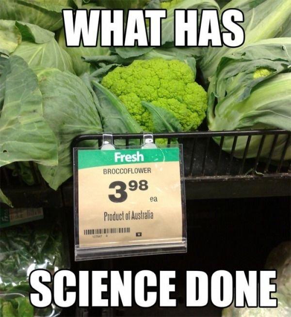 wtf science