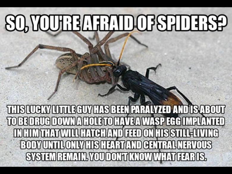 Yea... im still afraid.. .. i has a sad