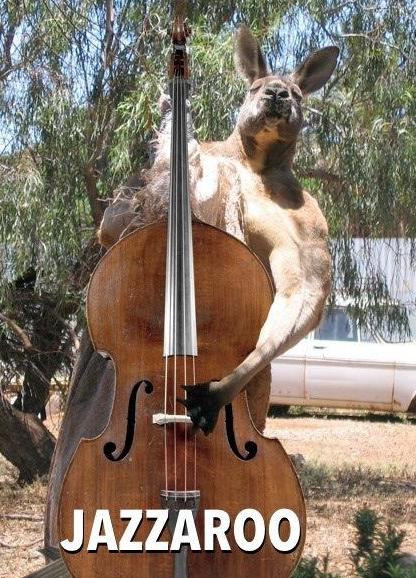 yeaaaaa. .. That kangaroo lifts.