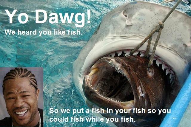 Yo Dawg. . sua, y tft in so yo!. There is always a bigger fish xzibit yo dawg