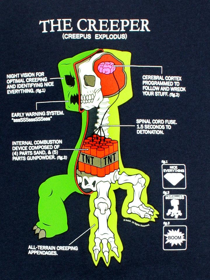 The Creeper's Anatomy Anatomy_3fa9b3_2280083