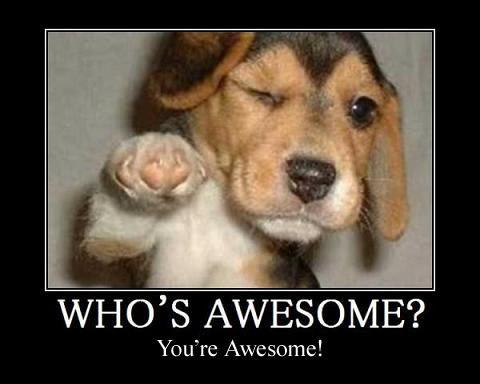 AWESOME. awesome. WHO' S AWESOME? You' re Awesome!