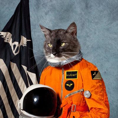 Catsmonaut. Reporting for duty.
