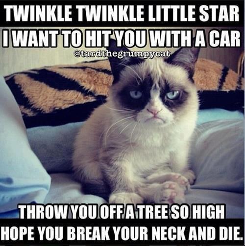 crumpy cat hits again. . I' WINI( TWILI( ' STAB Multikill [Til A on MEM YOUR NEW Mil DIE.