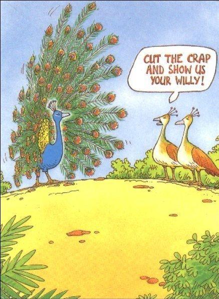 Cut the crap. .