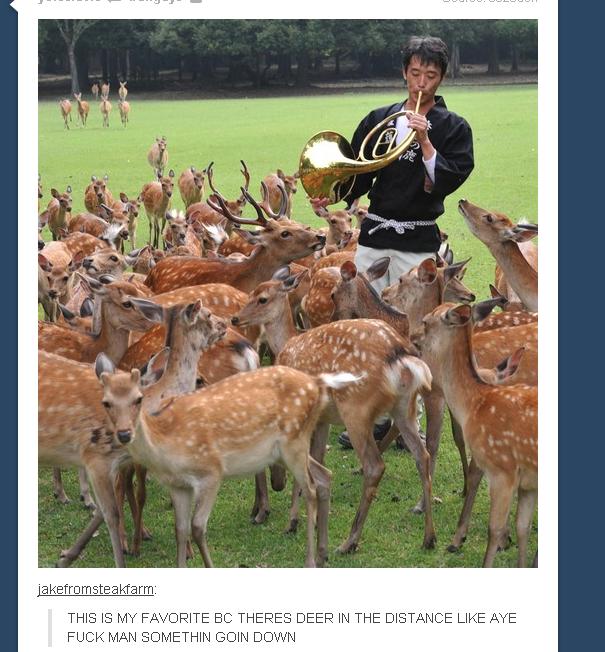 Deer. .. Deer is both singular and plural.