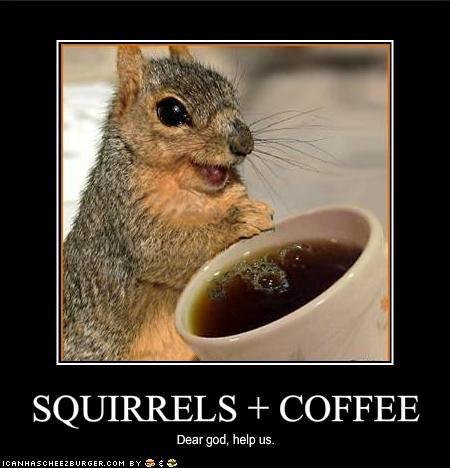 demon squirrel. . COFFEE Dear god, help us.. DO IT FAGGOT!