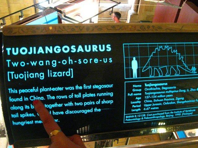 "Dinosaur Name Fail. Dinosaur Name Fail. lizard] tar was the first of rail plates running Full '"""" ' tharts In Jeru. l This peaceful plantinga knbtl in China, Th"