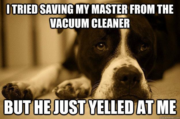 dog problems. . I TRIED '' iii mom THE