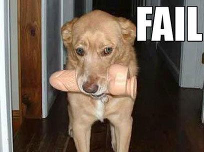 dog fail. .. Dog with a bone.