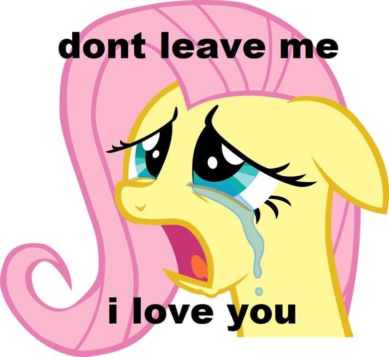 don't leave me i love you. don't worry i won't.. reaction images =/= content newfag