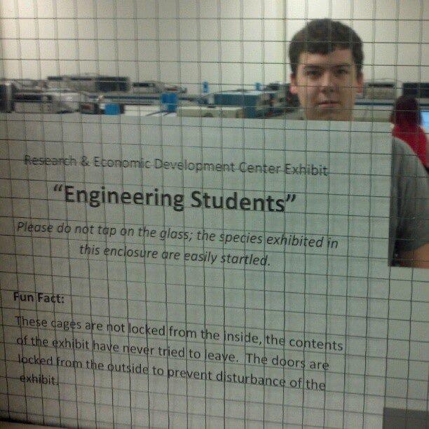 Engineers. They're like ANIMALS....... Somebody say Engineers?