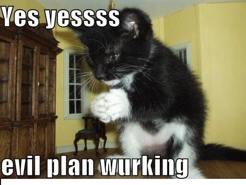 evil+plan+working_b18d97_3594064.jpg