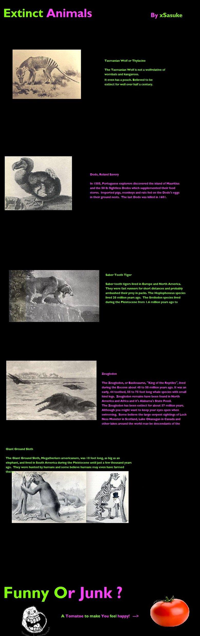 Extinct Animals! Part 1. A fact comp of extinct Animals! Just for you Funny Junk :3. Extinct Animals mermen Walros The 'Nam: nut ml vanhat: and kangaroo: extict