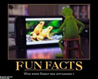 fun fact. .