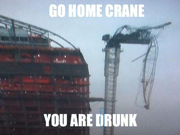 GO HOME CRANE. herp 100% OC. ABE. go home blue rectangle you are drunk