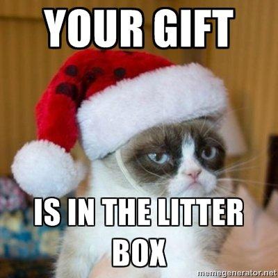 Grumpy cat shows his generosity.... .. It's a new laptop