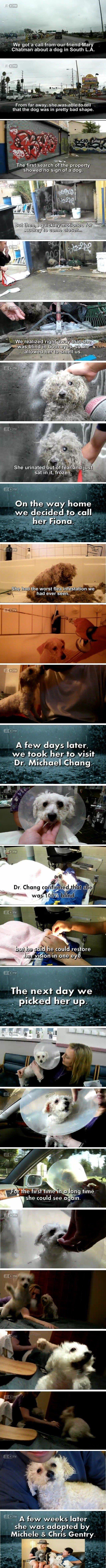 happy ending. .. yep