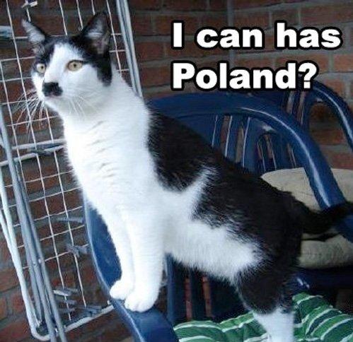 hitler cat. .. No.