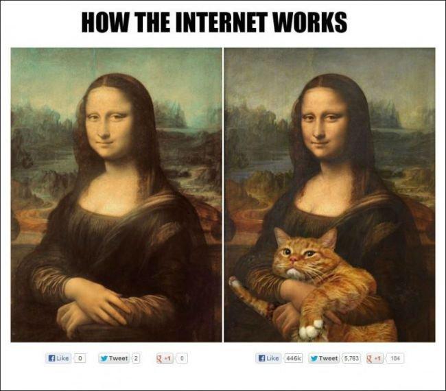 how internet work. .