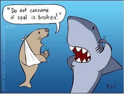 how to confuse a shark. . til seal E broken'. 'd