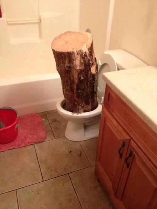 I dropped a huge log in the bathroom. pretty big.