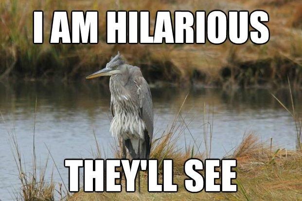 I'm Hilarious. Reminds me of Regular Show.