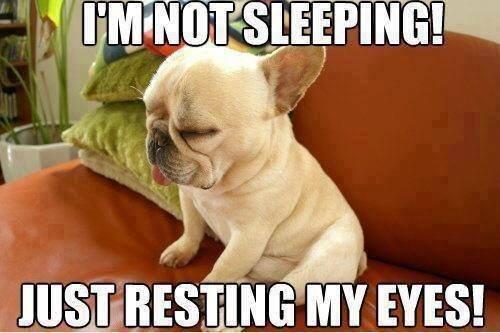 I'm just resting!. I'm just resting!. Lig-