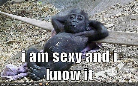 iam sexy and i know it. hahahahahahahhahahahahahha lol.. That looks like some guy in my class named jamal