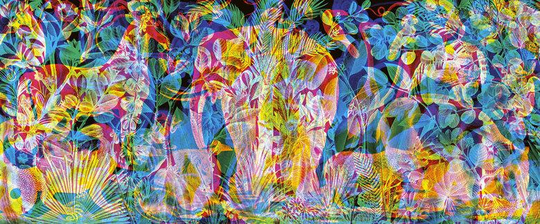 jungle graffiti. .