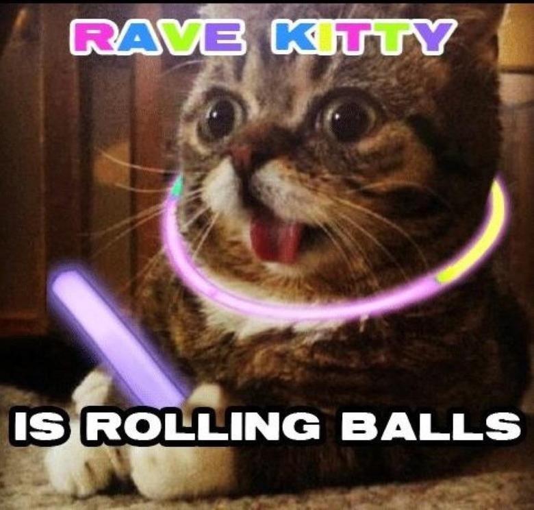 KittyTrippin. . liie, ROE; INC} BALLS