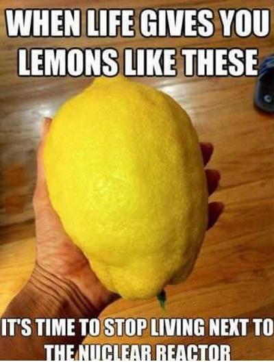 Lemons. . WHEN lift GIVES Will. Obligatory.