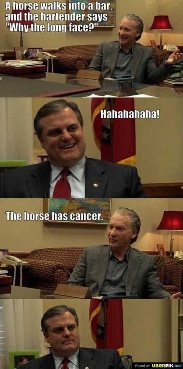 "lol. lol. lil L T"" illia - found on ' r. if the horse walked into a bar would it hurt its head?"