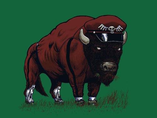 M. Bison. .