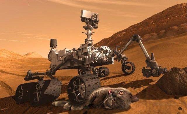 Mars. Get it?.. nope...