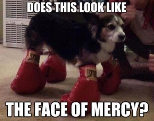 Mercy. . THE FACE IIN' MERCY?