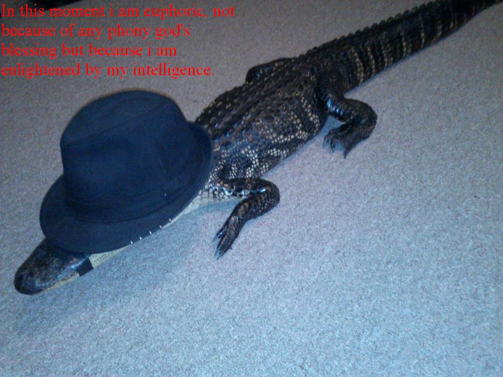 Neckbeard Crocodile. .