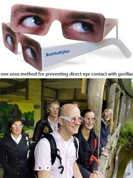 no eye contact. .