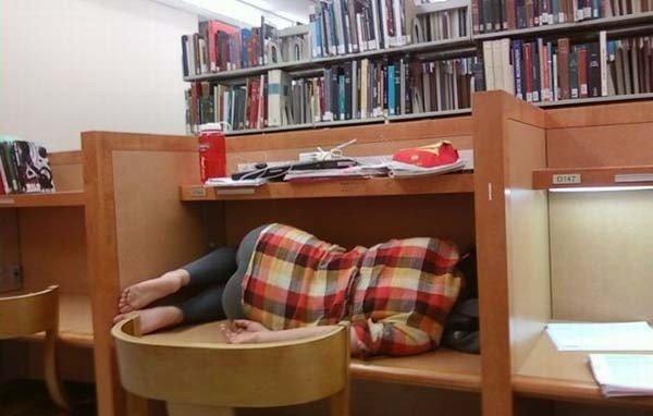 Perfect place. for a nap... surprise buttsecks