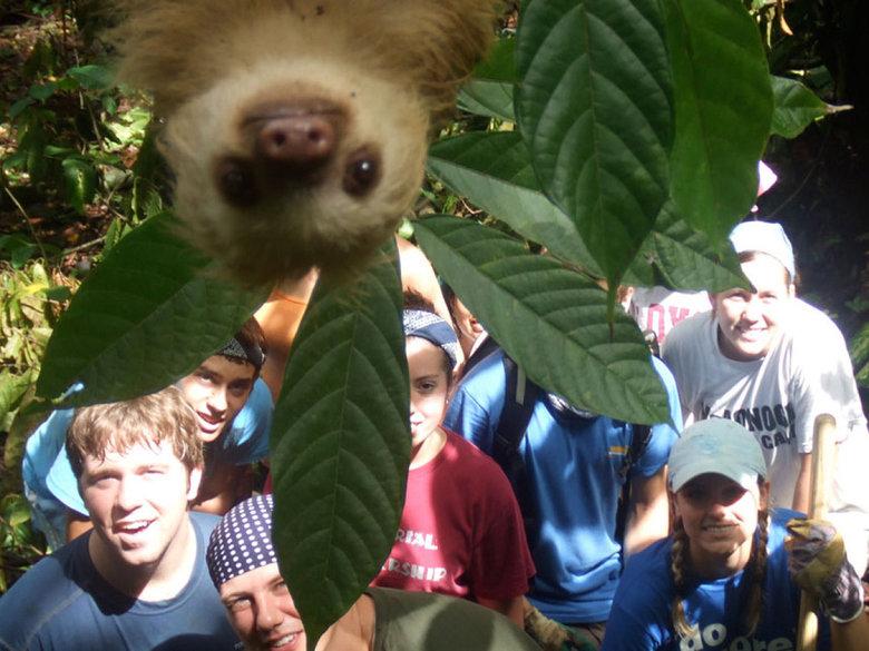photobombing like a sloth. .