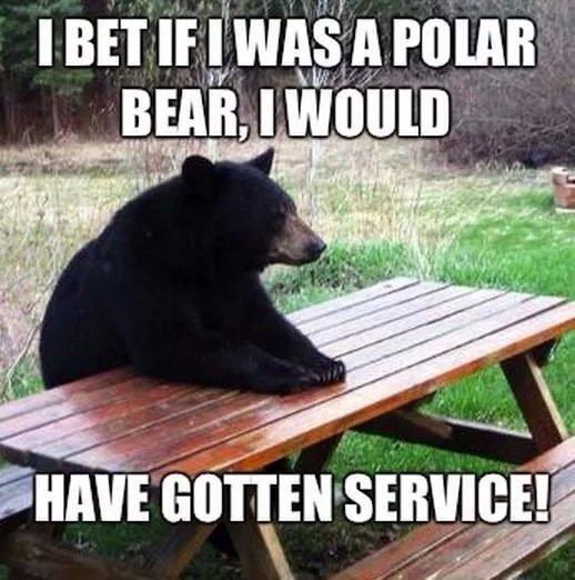 Poor bear. . if offi. racism is unbearable