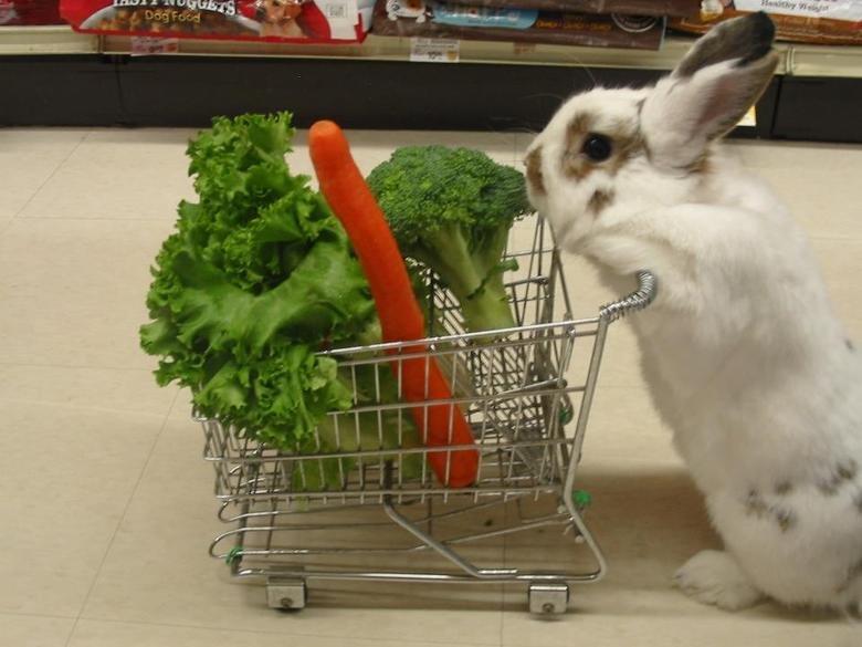 problem?. .. omg look at that lil bastard all pushin his lil cart, gettin his lil veggies n !!!