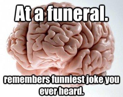 scumbag brain.. tags lie. remembers funnet i' ever heard.