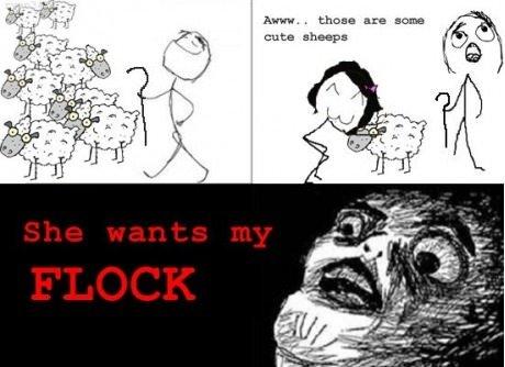 she wants my flocks. lol: tinyurl.com/btw9u2t. cuts.