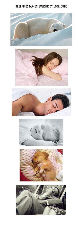 sleep. . MAKES LOOK COTE. Does sleeping make this cuter?