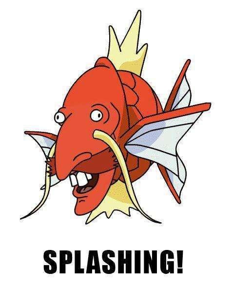 Splashing!. Oh, internet..