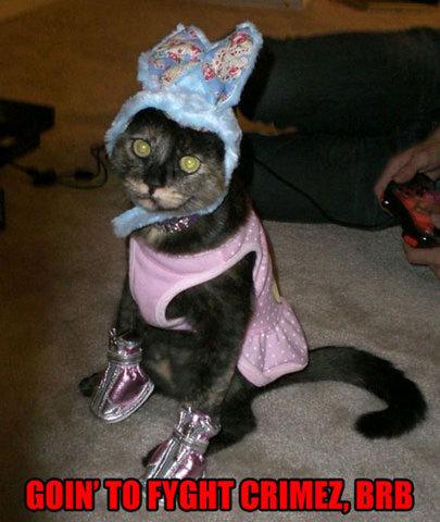 super kittay?. .